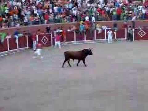 El toro que vuela