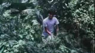 mr os - durian