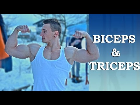 Biceps & Triceps Calisthenics Exercises & Routine Arms