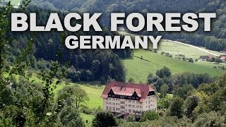 Black Forest (Schwarzwald) in Southwest Germany