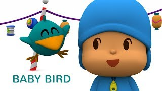 Pocoyo- Baby Bird's Adventures 🐥50 minutes | Cartoons for Kids