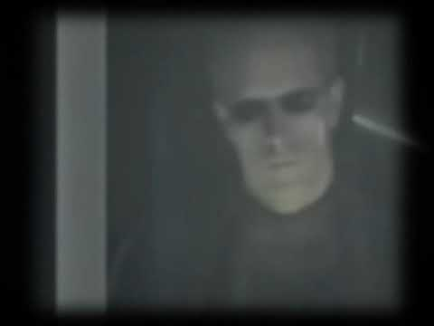 Wesker and Claire-