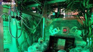 UNIQUE CUSTOMISED ARCADE MACHINE CLAW GAME: THE LION CLAW (Themed Elaut Crane Machine)