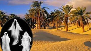 দেখুন আল কোরআনের আলোকে জিন জাতি সৃষ্টির ইতিহাস |