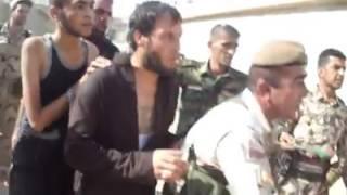 تعدادی از جنایتکاران داعشی که به دست رزمندگان کوبانی اسیر شدهاند
