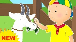 NEW! CAILLOU AT THE FARM | Cartoons for kids | Funny Animated Cartoons for Children | Cartoon movie