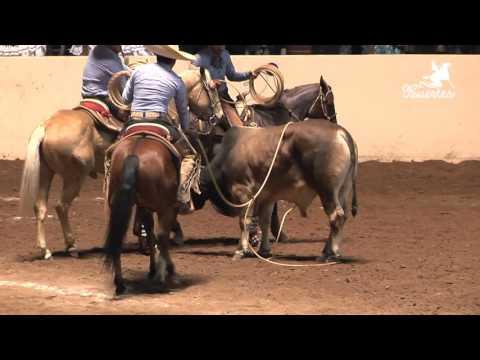 Las mejores 5 Ternas – Nacional Charro Querétaro 2015