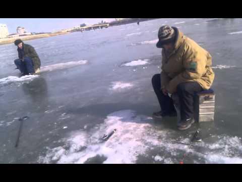 новости о рыбалке в атырау
