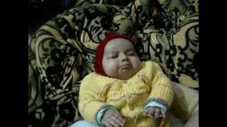 funny sleeping mitthu