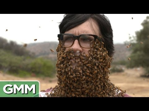 10 000 Bee Beard