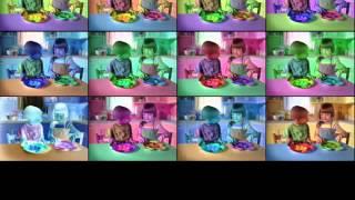 ZooPals Colors