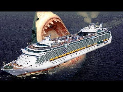 Xxx Mp4 दुनिया की सबसे बड़ी शार्क Megalodon LARGEST Shark In The World Megalodon Hindi 3gp Sex