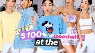 WHAT $100 DOLLARS GETS YOU AT THE GOODWILL 🤯 17 ITEMS?! | MyLifeAsEva