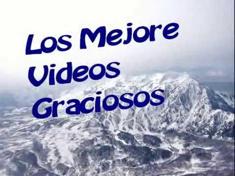 Los mejores Vidos Graciosos // Los mejores vídeos para cagarse de la risa//Burro follador//