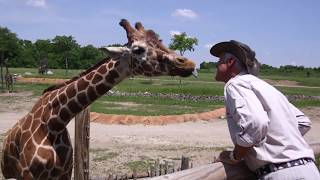 Jack Hanna's 40 Years At The Columbus Zoo