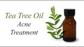 10 Usos aceite esencial de árbol de té. Tea tree oil. EcoDaisy