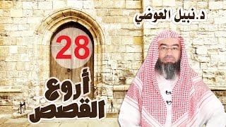 كيف صرف الله أبرهة عن هدم الكعبة فسبحان الله من أروع القصص 28