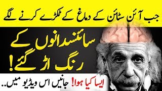 What Happen With Einstein Brain | Who Removed His Brain | Islamic Solution