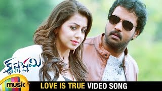 Love Is True Video Song | Krishnashtami Telugu Movie Songs | Sunil | Nikki Galrani | Adnan Sami