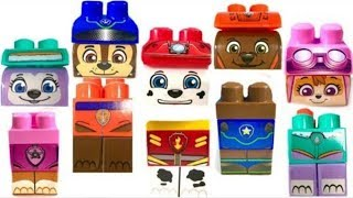 Learn Colors with Paw Patrol  Ionix Match Pups | Fizzy Fun Toys