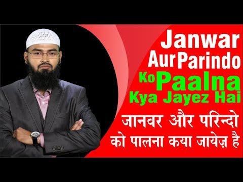 Xxx Mp4 Janwar Aur Parindo Ko Paalna Kya Jayez Hai By Adv Faiz Syed 3gp Sex