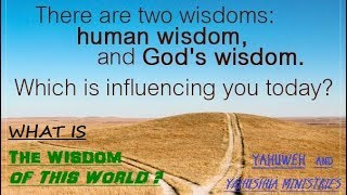 WHAT IS THE WISDOM OF THIS WORLD?
