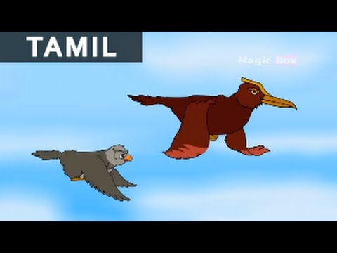 New King For Birds - Jataka Tales In Tamil - Animation / Cartoon Stories For Kids