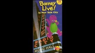 Barney Live! in New York City 2000 VHS (How it Should Have Been in My Opinion)