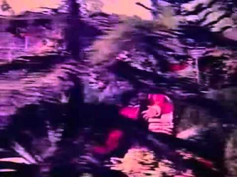 Xxx Mp4 ওমর সানি মৌসুমী হট গান দুধ কত বর দেখেন 3gp Sex