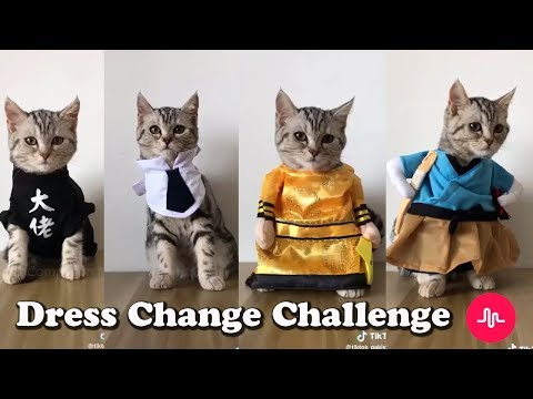 Xxx Mp4 Dress Change Challenge English Songs Complition Musicallly 3gp Sex