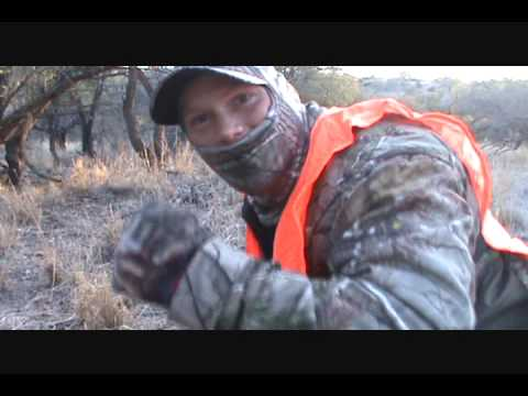 Mountain lion hunt at 11 yards