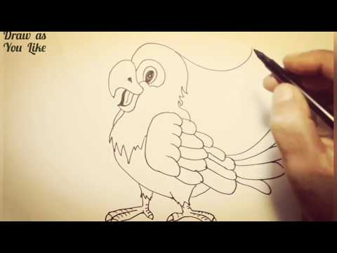 Xxx Mp4 Simple Sketch PARROT Cockatoo Or Cacatua 3gp Sex