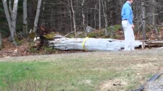 Pulling rotted tree down with my ford f150