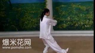 8-form Tai Chi Demo (Back)
