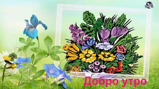 Good Morning Wishes..  whatsaap video Bulgarian