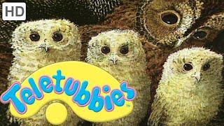 Teletubbies: Owl Babies - Full Episode