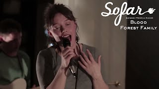 Blood Forest Family - Water | Sofar Oslo