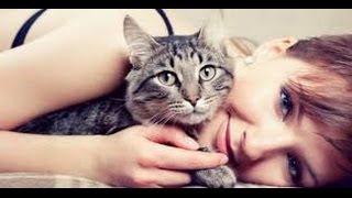 Seksi Cantik Nenen Kucing Telanjang