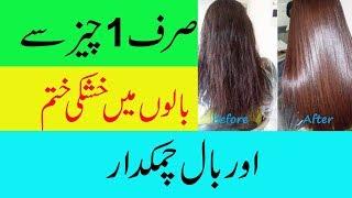 HOme Remedy For Hair Treatment In Urdu Healthy Hair Tips In Urdu