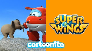 Super Wings | Baby Elephant Rescue | Cartoonito