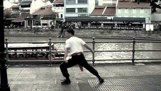 Southern Chinese Kung Fu Forms: 《红花拳》 与 《小花拳》