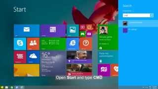 Windows 8.1: Store not working