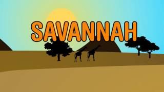 Diviners - Savannah (feat. Philly K) [LYRICS VIDEO]