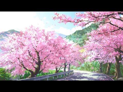 Xxx Mp4 Nhạc Nhật Bản Không Lời Hay Nhất Nhạc Không Lời Piano Nhẹ Nhàng Thư Giãn Tĩnh Tâm Xả Stress 3gp Sex