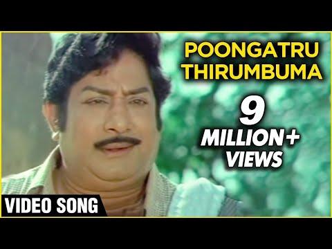 Xxx Mp4 Poongatru Thirumbuma Ilaiyaraja Janaki Sivaji Ganesan Mudhal Mariyathai Melodious Song 3gp Sex