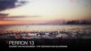 Vrouw met koffer - Perron 13 Full - Rijndert van Woudenberg