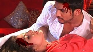 Naagin Last Episode - Ritik And Shivanya To Die