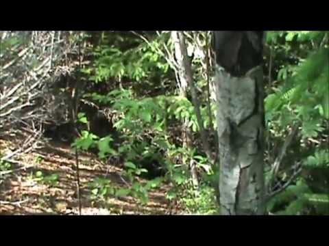 Red Island Airsoft - Attack The Hill - May 27, 2012.wmv