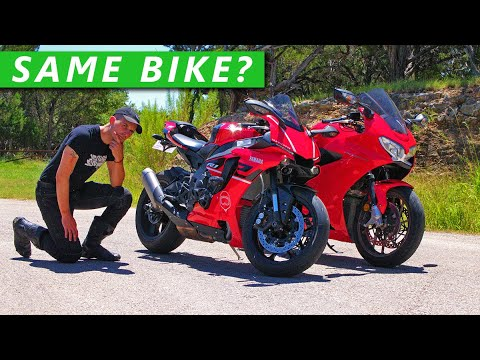 Can Beginner Riders Spot The Difference Superbike vs Sportbike