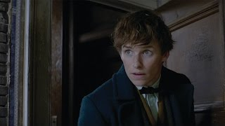 Fantastic Beasts and Where to Find Them - IMAX Fan Event Featurette [HD]